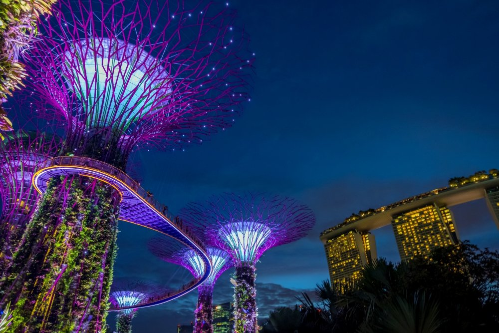 View of Garden by the bay at night - Singapore.